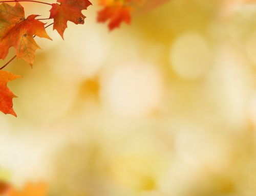 5 TIPS TO HELP YOU STAY HEALTHY THIS AUTUMN
